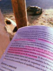 Luz y humo jimena sanchez (1)