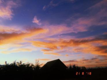 Luz y humo jimena sanchez (8)